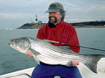 Mark Sedotti with a fine Herring run caught 25 pound bass.