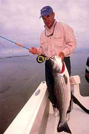 Striper action near Montauk is legendary!